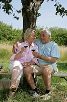 Senior-pair, smiles, sits, wine glasses, garden-bank, log, series, people, seniors, 60-70 years, pair, happily, cheerfully, gaze-contact, affection, a...