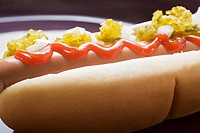 Hot dog with relish, ketchup and onions