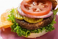 Home-made hamburger with gherkins, onions, tomato (thumbnail)