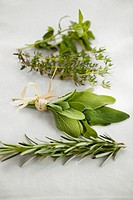 Fresh rosemary, sage, thyme and oregano