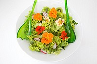 Fresh salad with edible flowers, close-up