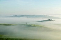 Italy, Tuscany, landscape in mist