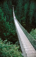Capilano suspension bridge. Vancouver. Canada