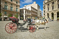 A horse and carriage in the plaza of Old Havana