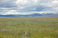 Spring grasslands and mountains