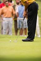 Golfer Repairing for Shot