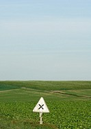 Warning sign and field of crops