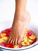 Close-up of a woman´s leg in a bowl of flower petals