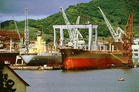 Container ships in a shipyard, Nagasaki, Japan
