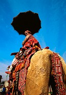 Low angle view of a mid adult man riding a camel, Jaipur, Rajasthan, India
