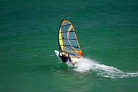 New Zealand, South Island, Dunedin, St Kilda Beach, Windsurfer