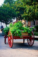 Potted plants on a cart, Savannah, Georgia, USA