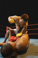 Mixed Martial Arts Fighter Punching
