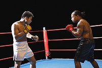 Two fighters in a ring