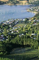 New Zealand, Banks Peninsula, Akaroa, elevated view