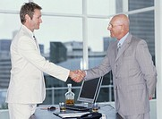 Two businessmen shaking hands, side view