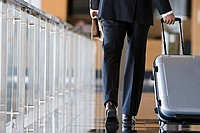 Businessman walking with luggage in lobby, low section, rear view, surface level