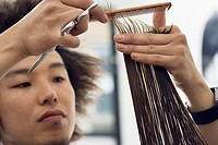 Young male hairdresser cutting woman's hair in salon, close-up, focus on foreground