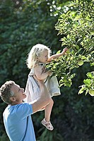 Father lifting daughter 2-3 above head, girl picking apple from tree in garden, profile