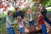 Multi-generational family collecting autumn leaves in wheelbarrow in garden, girl 7-9 throwing leaves