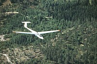 Glider above the forest