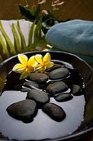 Spa elements, Stones in water in a black bowl with plumeria flowers, towels and plants in background