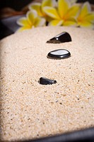 Spa elements, polished black rocks in a bowl filled with sand, blurred plumerias in background