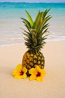A pineapple with flowers on a tropical beach