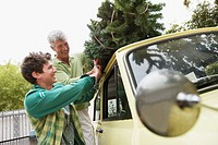 Father and Son Putting Christmas Tree on Car
