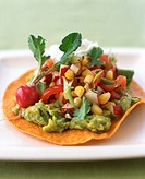 Tostada with Salsa and Guacamole