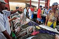Sir, Selwyn, Selwyn-Clarke, Market, Victoria, Mahe, Island, Seychelles,