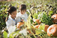 Asian sisters in pumpkin patch