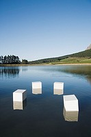 Boxes floating in water with trees
