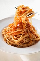 Spaghetti with tomato sauce wrapped around a fork