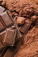 Cocoa powder and pieces of chocolate detail