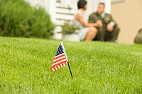Tiny American flag in lawn