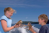 Children holding freshly caught crabs
