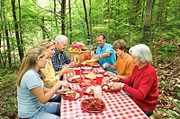 Family picnic in forest