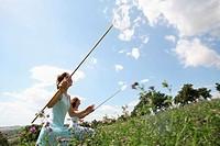 Two young women catching butterflies