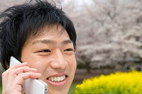 Young man using a mobile phone, cherry blossoms and rape field in the background, front view, close up, Japan