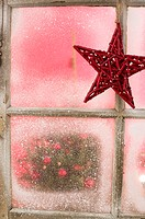 Decoration star on Window