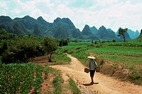 Farm worker in china