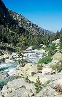 River valley corsica