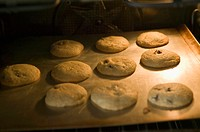 Chocolate Chip Cookies Baking in an Oven