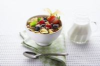 Breakfast cereal with fruit