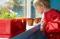Preschool boy checking potted plants