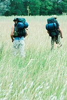 Two hikers walking through field, rear view
