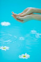 Young woman cupping hands over surface of water, daisies floating beneath