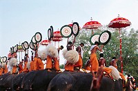 Trichurpooram pooram , Elephants March procession of bejeweled temple Festival , Kerala , india