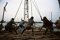 operating Chinese fishing net , cochin kochi , kerala , india